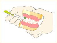 毎日の歯磨き