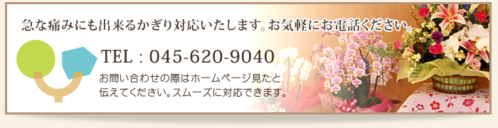 045-620-9040